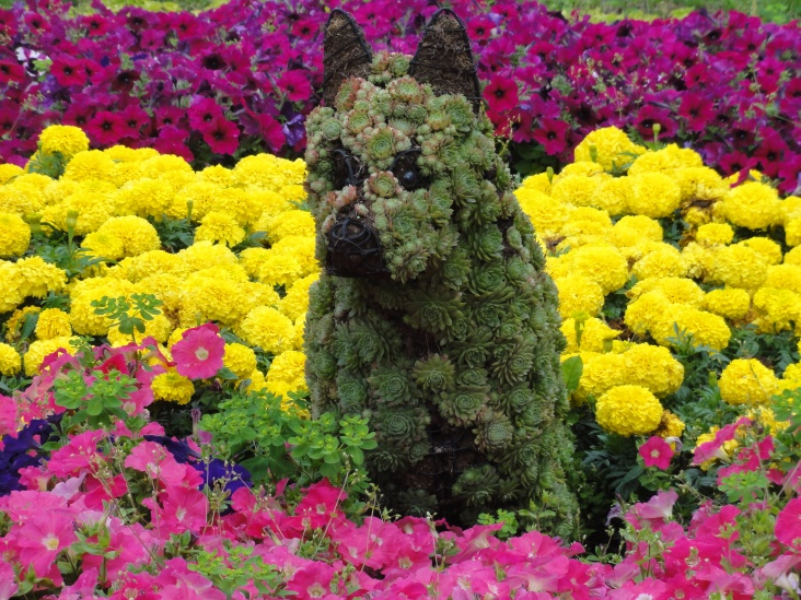 Na, wer findet den Hund? Wikimedia Commons, Fæ. CC-Lizenz